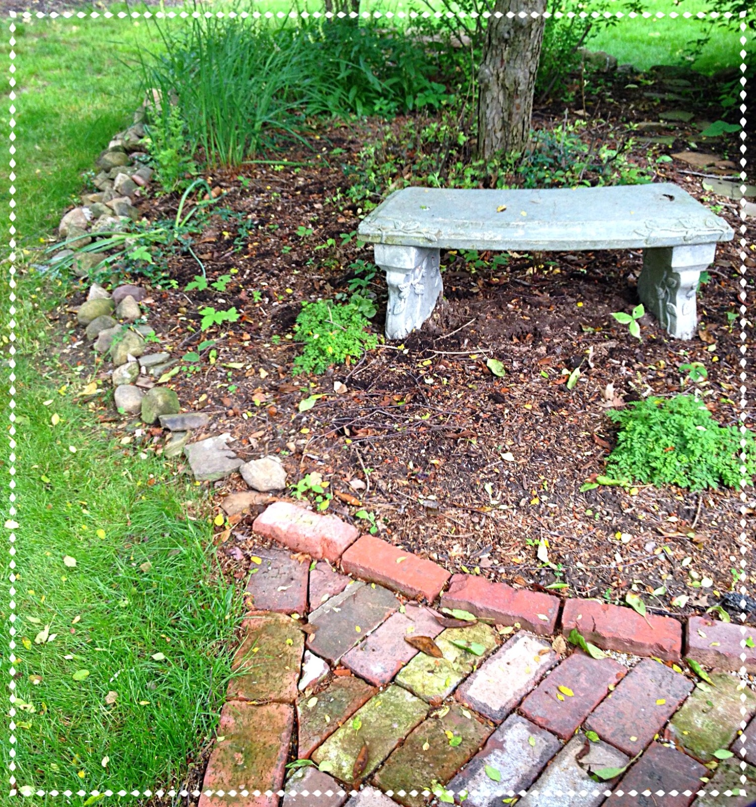 To mulch or not to mulch and other lawn care questions for Gardening questionnaire