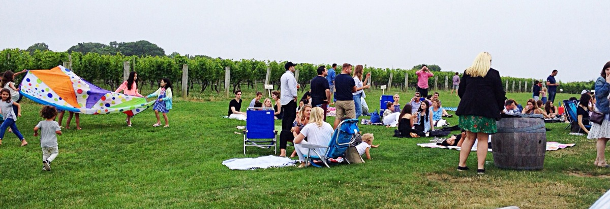 Photo of vineyard showing families relaxing