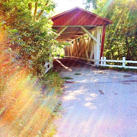 photo of sunlight streaming before bridge